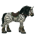 Zebra Admiralty Stallion