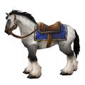 تصویر: http://www.warcraftmounts.com/images/thumbs/ridinghorseskinwhite.jpg