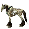 Unsaddled Brown Skeletal Horse